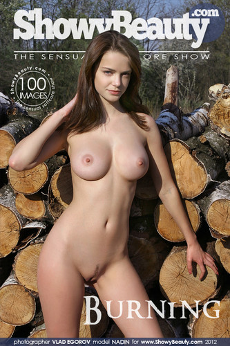 [Met-Art Network] Nadin A, Nikola, Pela - Photo And Video Pack 1582739441_ma_00001